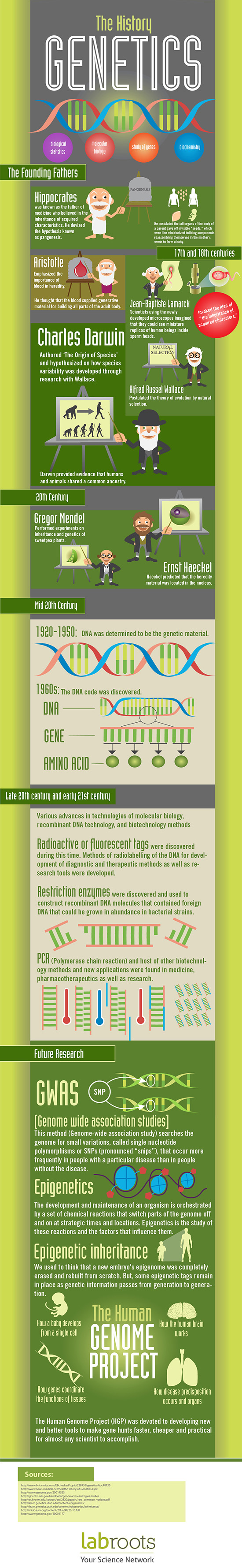 history of heredity and evolution Evolutionary genetics is the broad field of studies that resulted from the i will review the history of evolutionary and ecological the spread of a gene in natural conditions in a colony of the moth panaxia dominula l heredity, 1:143-174 fisher, r a, and e b ford 1950.